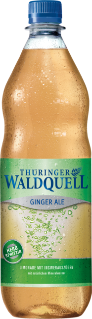 THÜR.WALDQ. GINGER ALE 1,0 PET